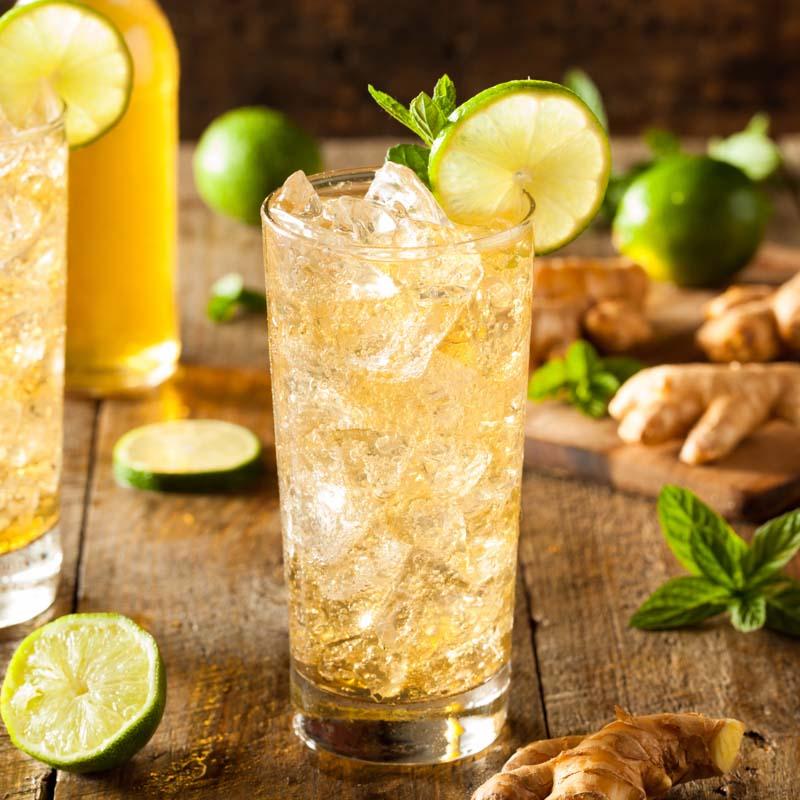 Der Tringer ist ein erfrischender Longdrink mit Traveschluck Aquavit und Ginger Ale. Einfach zubereitet und perfekt für einen lauen Sommerabend.